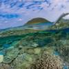 【サンゴの楽園】伊平屋島ダイビングの魅力