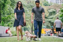 A man and woman walking their Shih Tzu in the park