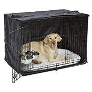 dog starter crate