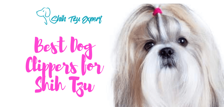 Best Dog clippers for Shih Tzu –Buyer's Guide and Reviews