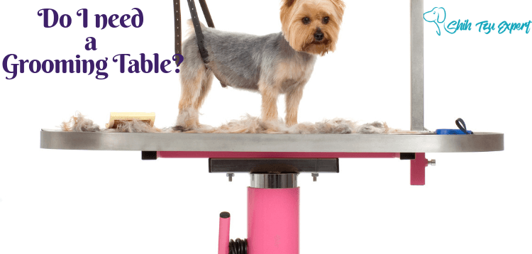 Dog Grooming Table - Do I need one?