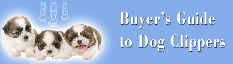 best clippers for shih tzu dogs & how to find them