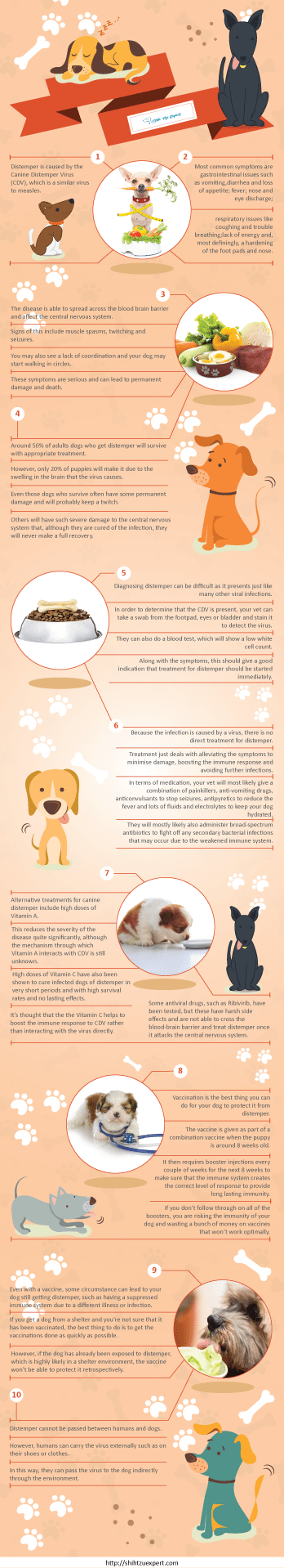 Canine Distemper [Please Read THIS before putting your Dog