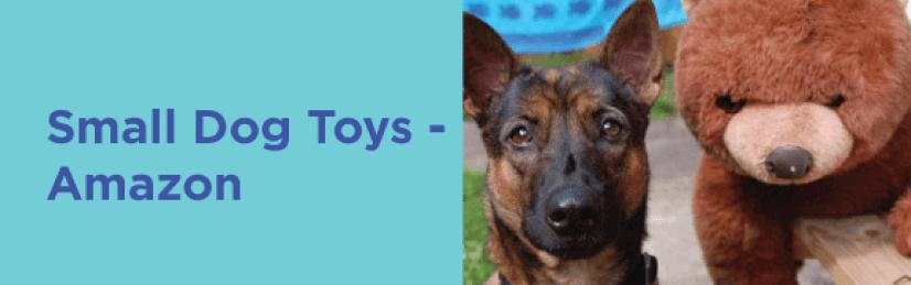 Small Dog Toys Amzaon