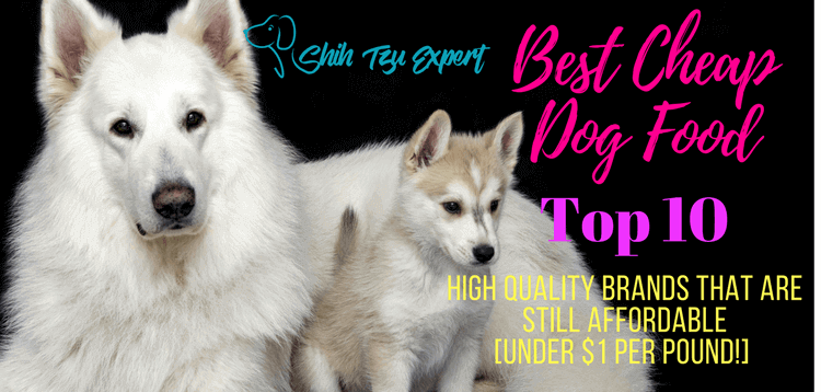 Best Cheap Dog Foods – our Top 10 Picks of High Quality Brands That Are Still Affordable [Under $1 per pound!] in 2019