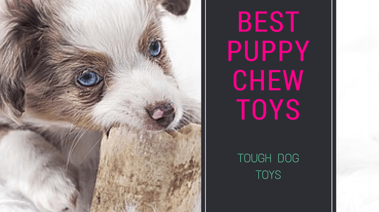 Best Puppy Chew Toys : Most popular and safe chew toys for Teething Puppies!