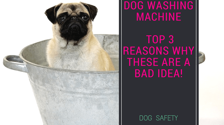 Dog Washing Machine – Top 3 reasons why these are a bad idea!