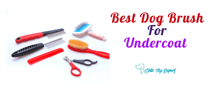 Best Dog Brush For Undercoat [The TOP 5 Products that are Worth buying]