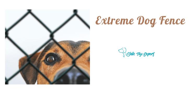 Extreme Dog Fence [Pro-Grade vs Max-Grade]