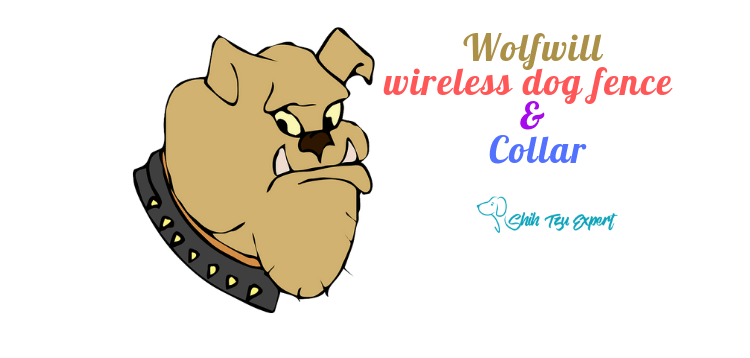 Wolfwill wireless dog fence  & Collar  [Waterproof + Upgraded]