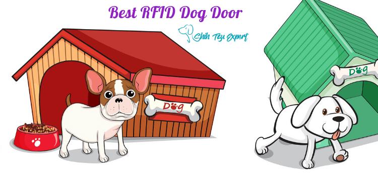 Best RFID Dog Door (1)