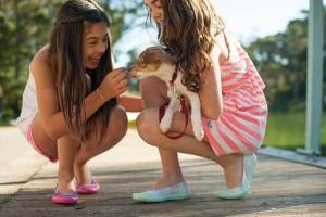 12 Surprising Benefits of Owning a Dog