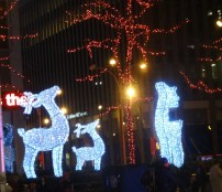Reindeers bring more light to Sixth Avenue