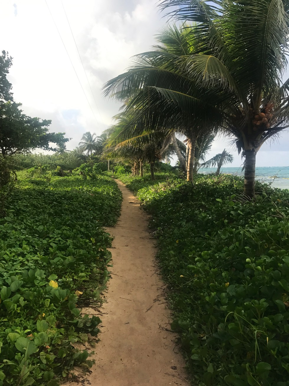 Travel Little Corn Island // Shikha la mode