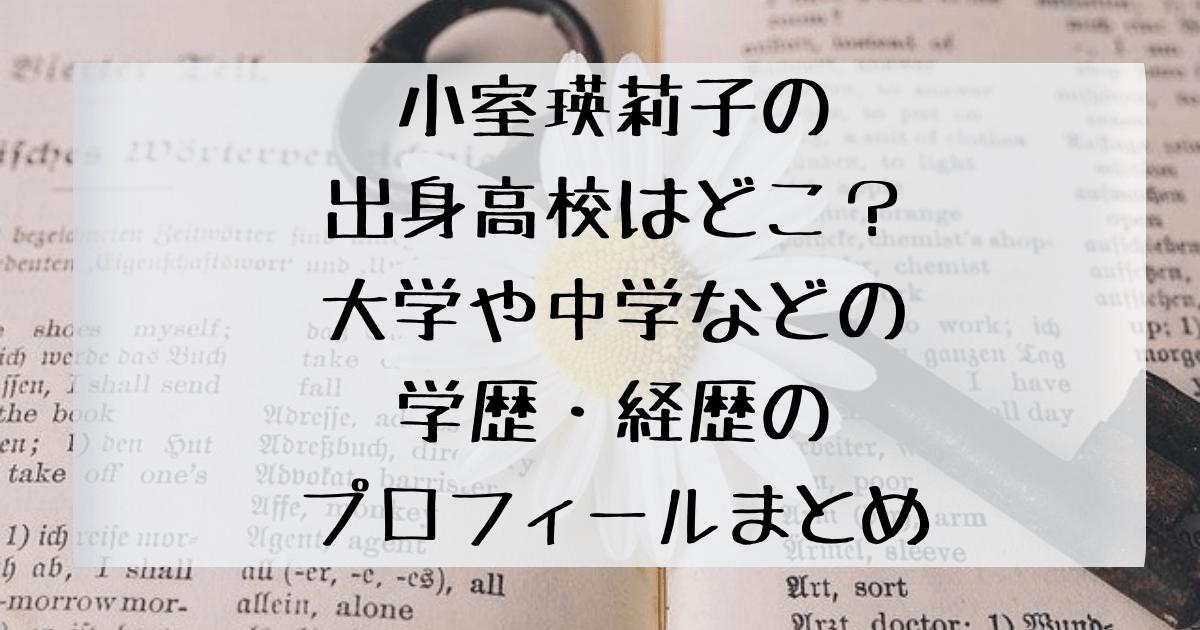 小室瑛莉子の出身高校はどこ?大学や中学などの学歴・経歴のプロフィールまとめのアイキャッチ画像