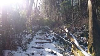 mt shiraga shiragayama kochi motoyama hiking (1)