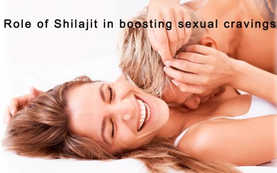 Role of Shilajit in boosting sexual cravings