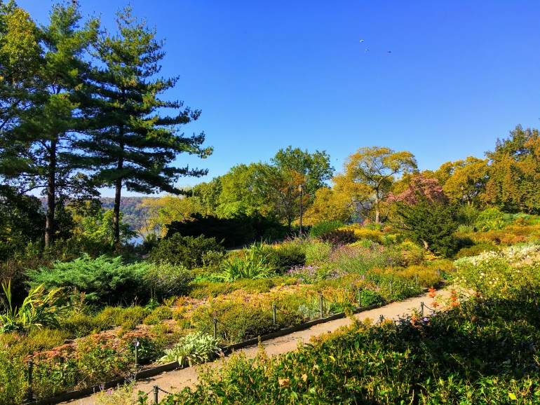 Heather Garden at Fort Tyron Park romantic NYC date