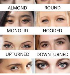 eye shape chart different types guide downturned hooded  [ 1000 x 1905 Pixel ]
