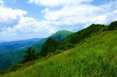 DSC_1780○オミナエシ咲く高原