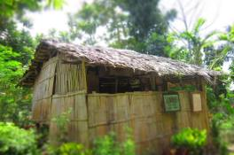 Gumme, another traditional house