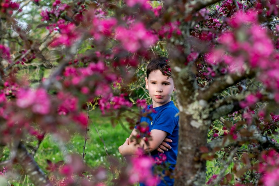 Limited Spring Family Photo Shoots, London photographer