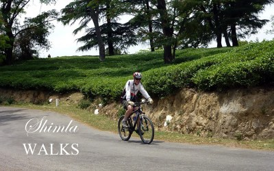 Cycling in Shimla