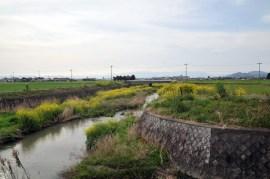 白鳥川-岩倉あたり