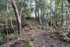 瓶割山(長光寺山)大岩ルート-三の郭手前付近