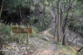 瓶割山(長光寺山)城跡-土橋