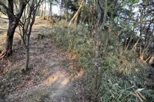 瓶割山(長光寺山)城跡-土橋から本丸を望む