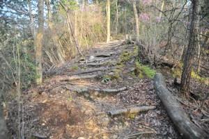 瓶割山(長光寺山)城跡-散策路階段
