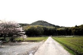 瓶割山(長光寺山)御沢ルート-入口遠景