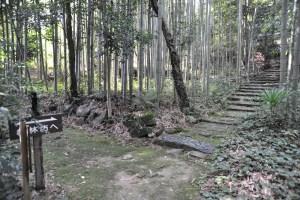 観音寺城-山裾21