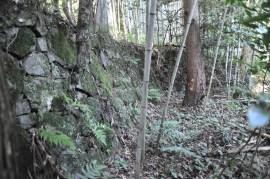 観音寺城-山裾33