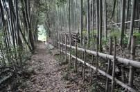 観音寺城-山裾45