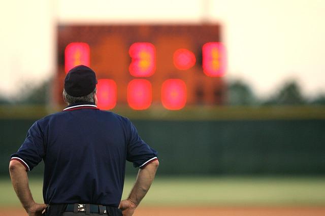 野球の審判の後ろ姿