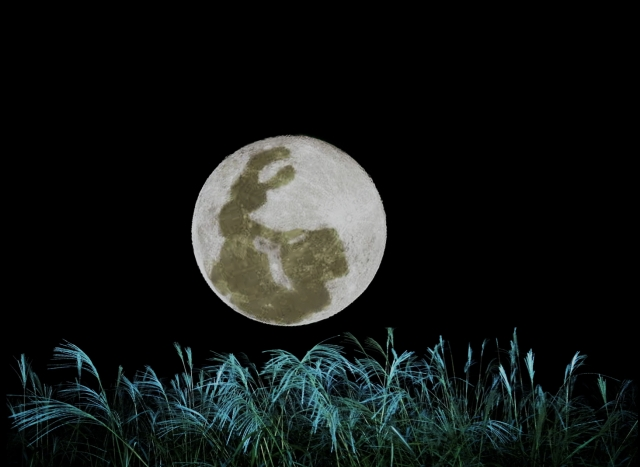 お月見の夜