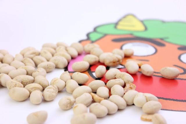 節分の豆と鬼の仮面