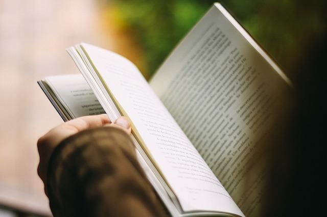 英語で書かれた本を読む人
