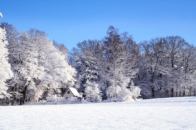 雪が積もった山と家