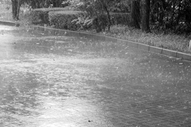 大雨が降るアスファルト
