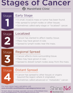 Chart showing what the stages of cancer mean also  guide terms and side effects shine from rh shine rshfieldclinic