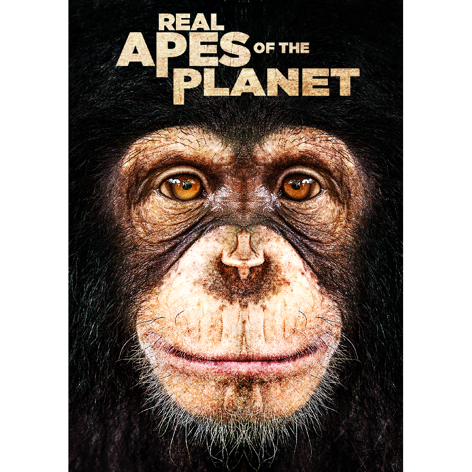 Real Apes of the Planet Keyart