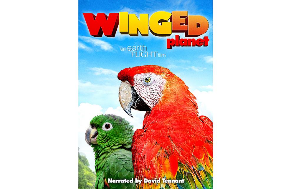 Winged Planet - Keyart - nstagram