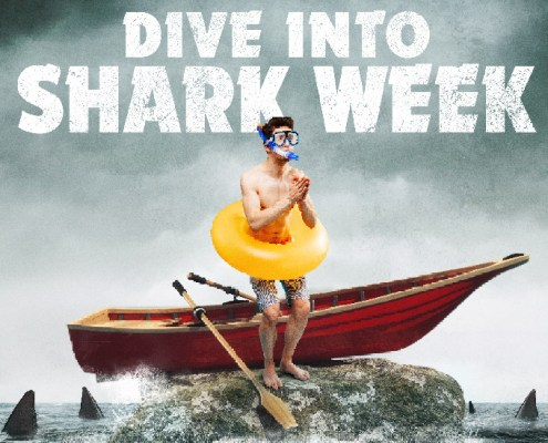 Dive Into Shark Week