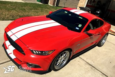 red mustang shelby racing stripes 2 colors side