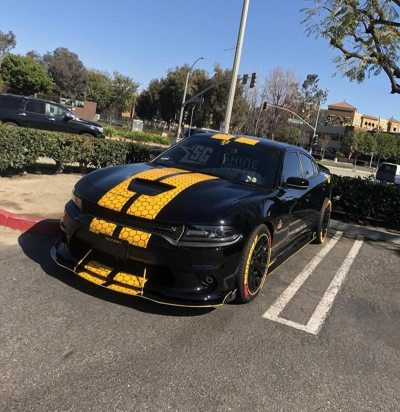 DODGE charger stripes SRT scat pack honey comb side