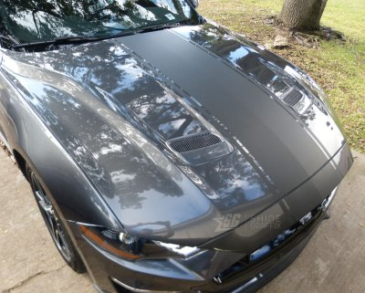 2019 Mustang GT 500 Snake Racing Stripes Shelby Hood