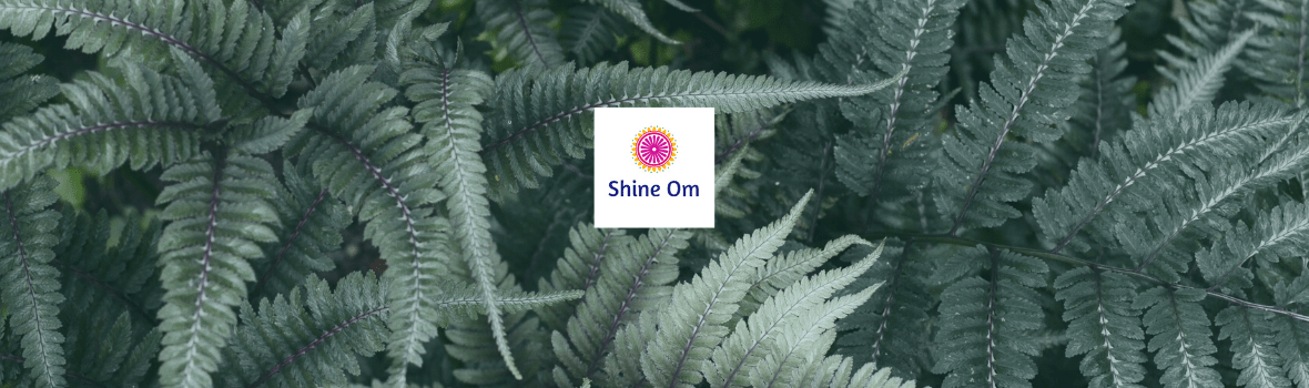 Shine Om - Yoga, wellness and self-care products in Canberra